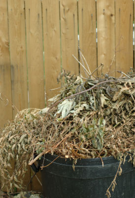 How To Recycle Yard Waste